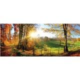 Vliesové fototapety slunce a les rozměr 250 cm x 104 cm