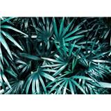 Vliesové fototapety palmové listy rozměr 368 cm x 254 cm
