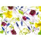 Vliesové fototapety bylinky rozměr 368 cm x 254 cm