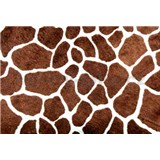Vliesové fototapety žirafí kůže