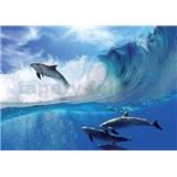 Vliesové fototapety delfíni rozměr 312 cm x 219 cm