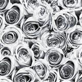 Samolepící tapety růže šedé 45 cm x 15 m