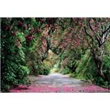 Fototapety Wicklow Park rozměr 368 cm x 254 cm