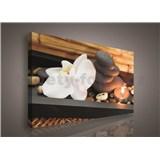 Obraz na plátně orchidej, svíčka 75 x 100 cm