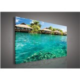 Obraz na plátně Maledivy 75 x 100 cm