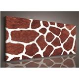 Obraz na plátně žirafí kůže 145 x 45 cm