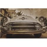 Luxusní vliesové fototapety Miami - sépie, rozměr 418,5 cm x 270 cm