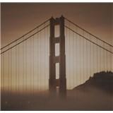 Luxusní vliesové fototapety San Francisco - sépie, rozměr 279 cm x 270 cm
