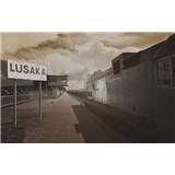 Luxusní vliesové fototapety Lusaka - sépie, rozměr 418,5 cm x 270 cm