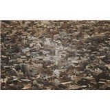 Luxusní vliesové fototapety Rajasthan - sépie, rozměr 418,5 cm x 270 cm