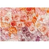 Fototapety růže Flowers rozměr 366 cm x 254 cm