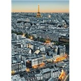 Fototapety Paris Aerial View