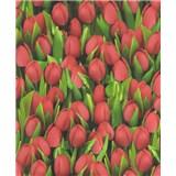 Vinylové tapety na zeď Allure tulipány červené