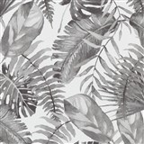 Vliesové tapety na zeď IMPOL Eyecatcher listy rostlin šedé