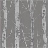 Vliesové tapety na zeď Instawalls kmeny stromů s větvemi stříbrné na šedém podkladu