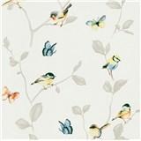 Vliesové tapety na zeď Natural Living ptáci a motýli barevní na hnědých větvích s lístky