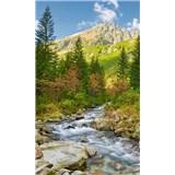 Vliesové fototapety údolí rozměr 150 cm x 250 cm