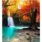 Vliesové fototapety lesní vodopád rozměr 225 cm x 250 cm