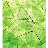 Vliesové fototapety listové žíly rozměr 225 cm x 250 cm