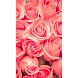 Vliesové fototapety růže rozměr 150 cm x 250 cm