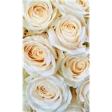 Vliesové fototapety bílé růže rozměr 150 cm x 250 cm