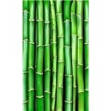 Vliesové fototapety bambus rozměr 150 cm x 250 cm