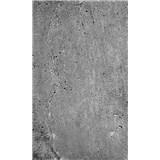 Vliesové fototapety betonová stěna rozměr 150 cm x 250 cm