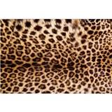 Vliesové fototapety leopardí kůže rozměr 375 cm x 250 cm
