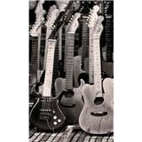 Vliesové fototapety kytarová kolekce rozměr 150 cm x 250 cm