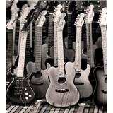 Vliesové fototapety kytarová kolekce rozměr 225 cm x 250 cm