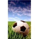Vliesové fototapety fotbalový míč rozměr 150 cm x 250 cm