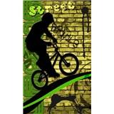 Vliesové fototapety bicycle green rozměr 150 cm x 250 cm