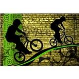 Vliesové fototapety bicycle green rozměr 375 cm x 250 cm