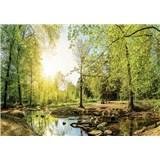 Vliesové fototapety les s potokem rozměr 104 cm x 70,5 cm