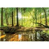 Vliesové fototapety les a potok rozměr 104 cm x 70,5 cm