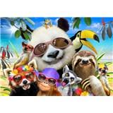 Vliesové fototapety selfie veselých zvířátek rozměr 368 cm x 254 cm
