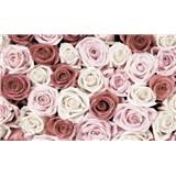 Fototapety růže rozměr 368 cm x 254 cm