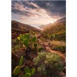 Vliesové fototapety Hefele sluneční teplo, rozměr 200 cm x 280 cm