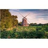 Vliesové fototapety Hefele mlýn, rozměr 450 cm x 280 cm