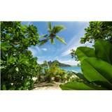 Vliesové fototapety Hefele cesta do džungle, rozměr 450 cm x 280 cm