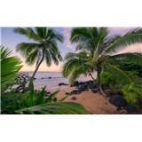 Vliesové fototapety Hefele Havajský sen, rozměr 450 cm x 280 cm