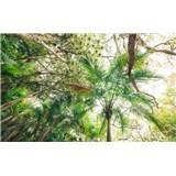 Vliesové fototapety Hefele dotek džungle, rozměr 450 cm x 280 cm