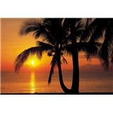 Fototapety Palmy Beach Sunrise rozměr 86 cm x 200 cm