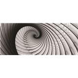 Vliesové fototapety lastura šedá rozměr 250 cm x 104 cm