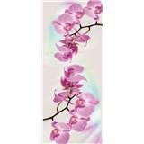 Vliesové fototapety orchidej rozměr 91 cm x 211 cm