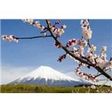 Vliesové fototapety japonská sopka s květy rozměr 312 cm x 219 cm