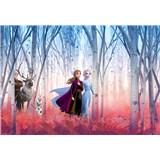Fototapety Disney Frozen II přátelé navždy rozměr 368 cm x 254 cm