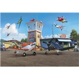 Fototapety Disney Letadla terminál rozměr 368 cm x 254 cm