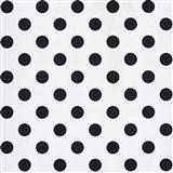 Papírová tapeta na zeď bílá lesklá s černými puntíky