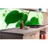 Samolepící tapety za kuchyňskou linku zelené listy rozměr 180 cm x 60 cm